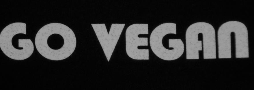 How to Go Vegan | Vegan Living by Danielle